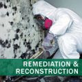 Mold Removal and Remediation - Los Angeles