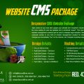 CMS Websites Dubai