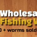 Wholesale Fishing Worms