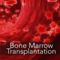 Cost-Effective Bone Marrow Transplant in India