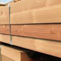 Wholesale, Retailer and dealer of Century ply Plywood in Delhi