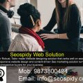Seospidy designs gorgeous websites and promotes them too