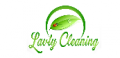 Upholstery Cleaning North County - lavty cleaning