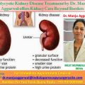 Polycystic Kidney Disease Treatment by Dr. Manju Aggarwal offers Kidney Care Beyond Borders