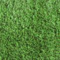 Things You Need to Know About Artificial Grass Turfs