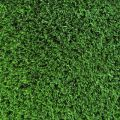 Artificial Turf For Exteriors To Enhance The Looks, In Maintenance-Free Way