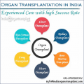 Get the Gift of New Life with Organ Transplant in India