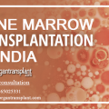 Bone Marrow Transplant in India Offers Expert, Lifesaving Treatment
