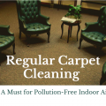 Regular Carpet Cleaning - A Must for Pollution-Free Indoor Air