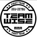 Team Wise Training Center