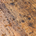 Fixing Water-Damaged Hardwood Floors