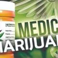 Medical Marijuana seminars & Events