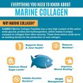 Everything you need to know About Marine Collagen