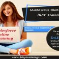 Develop Your Understanding about Salesforce Online Training