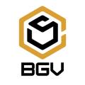 BGV Construction & Windows LLC