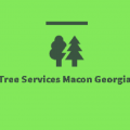 Tree Services Macon Georgia