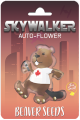 Skywalker Autoflower Marijuana Seeds