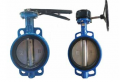 Wafer Butterfly Valve Manufacturer In Canada